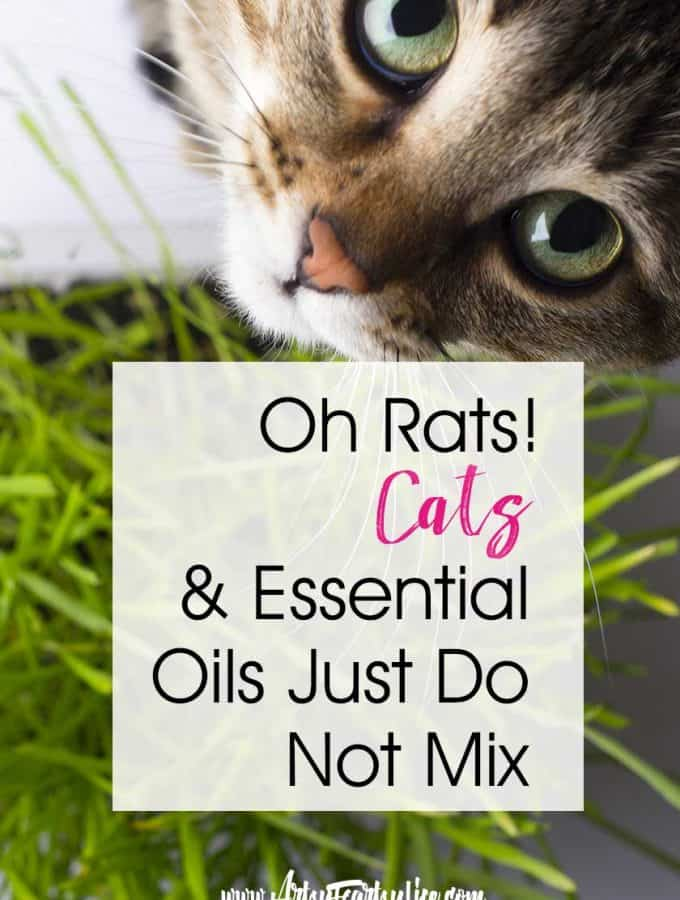 Cats and Essential Oils Just Do Not Mix ... It is super important to remember that oils can be toxic to felines. While there are a few safe ones, most can't be safely used in a diffuser or spray. Here are my top safety tips and ideas for natural living with cats!