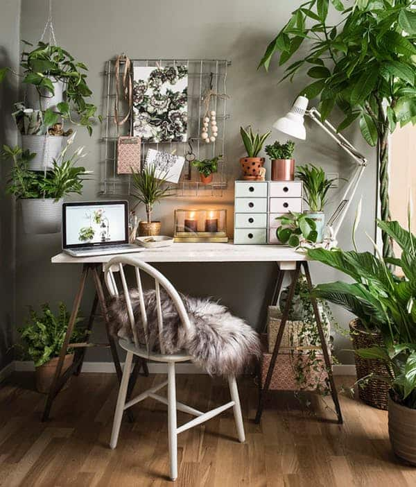 Home office plants - apartment therapy