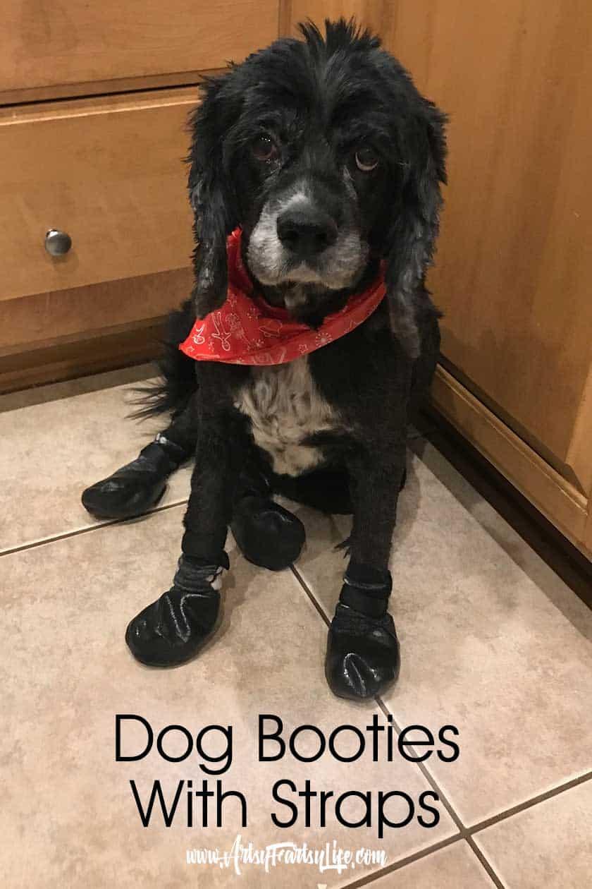 Dog Booties With Velcro Fasteners... Part of my post about how to keep your dog from biting her itcy paws. Works great for dogs with allergies to grass and mold.