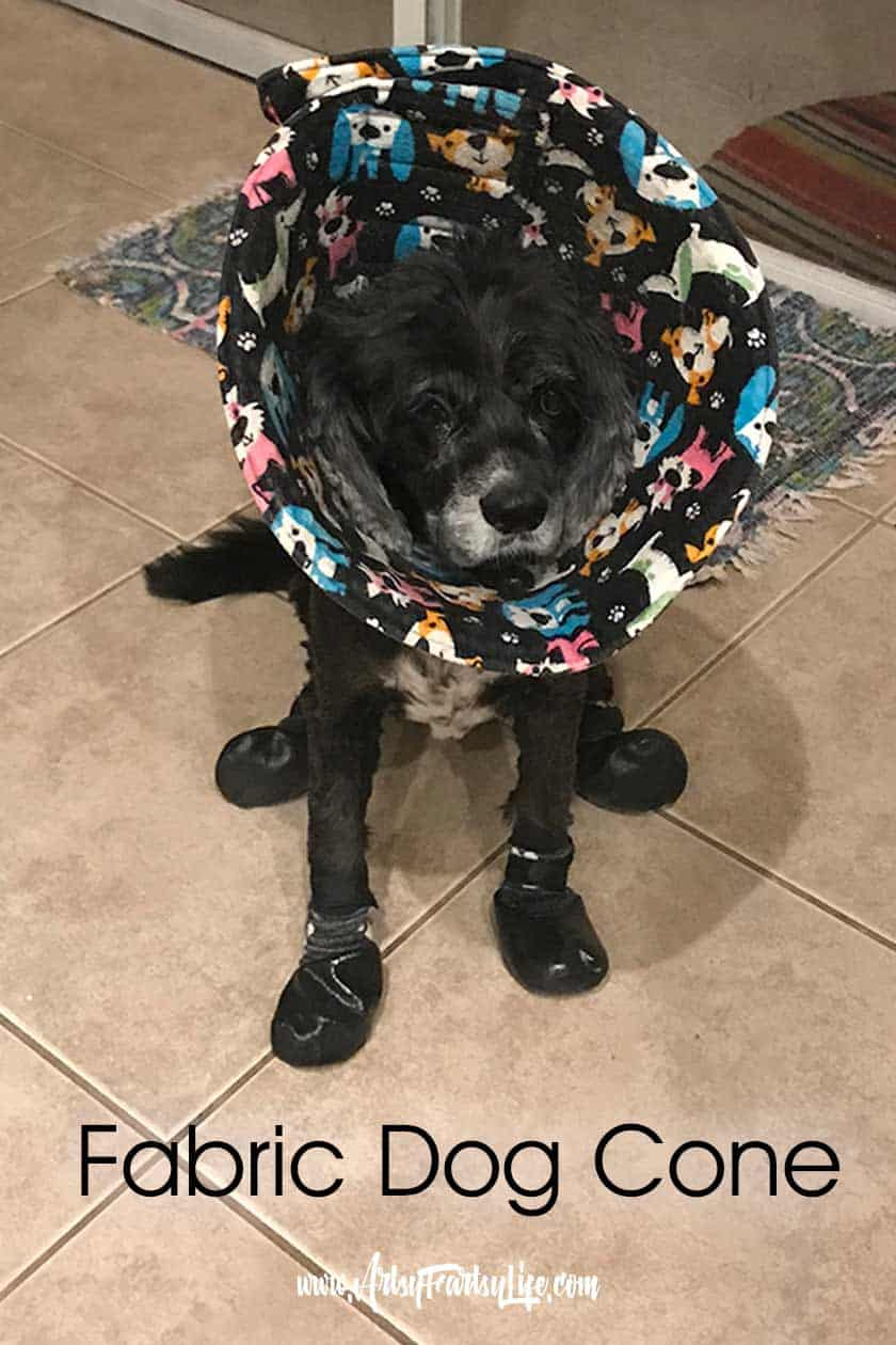 Fabric Dog Cone... Part of my post on how to help your dog with itchy paws. All my favorite tips and ideas for keeping your dog from chewing her feet.
