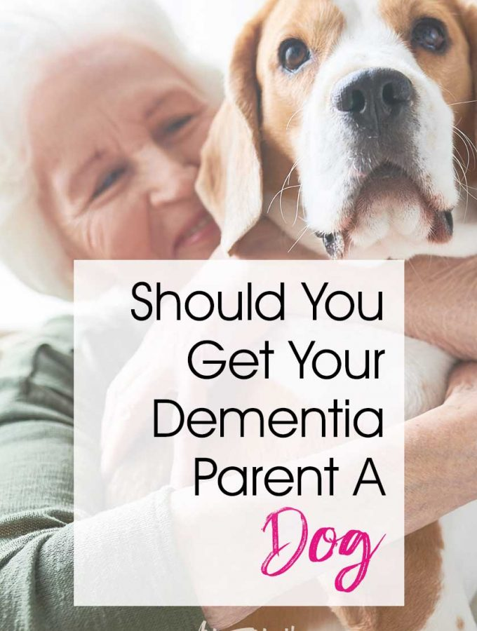 Should You Get Your Elder Dementia Parent A Cat or a Dog... As an Alzheimer or dementia caregiver it is tempting to think that getting your loved one a companion pet might make them happier. Let's talk about the struggles and help that having a dog or a cat for your elderly parent can bring! #dementia #alzheimer