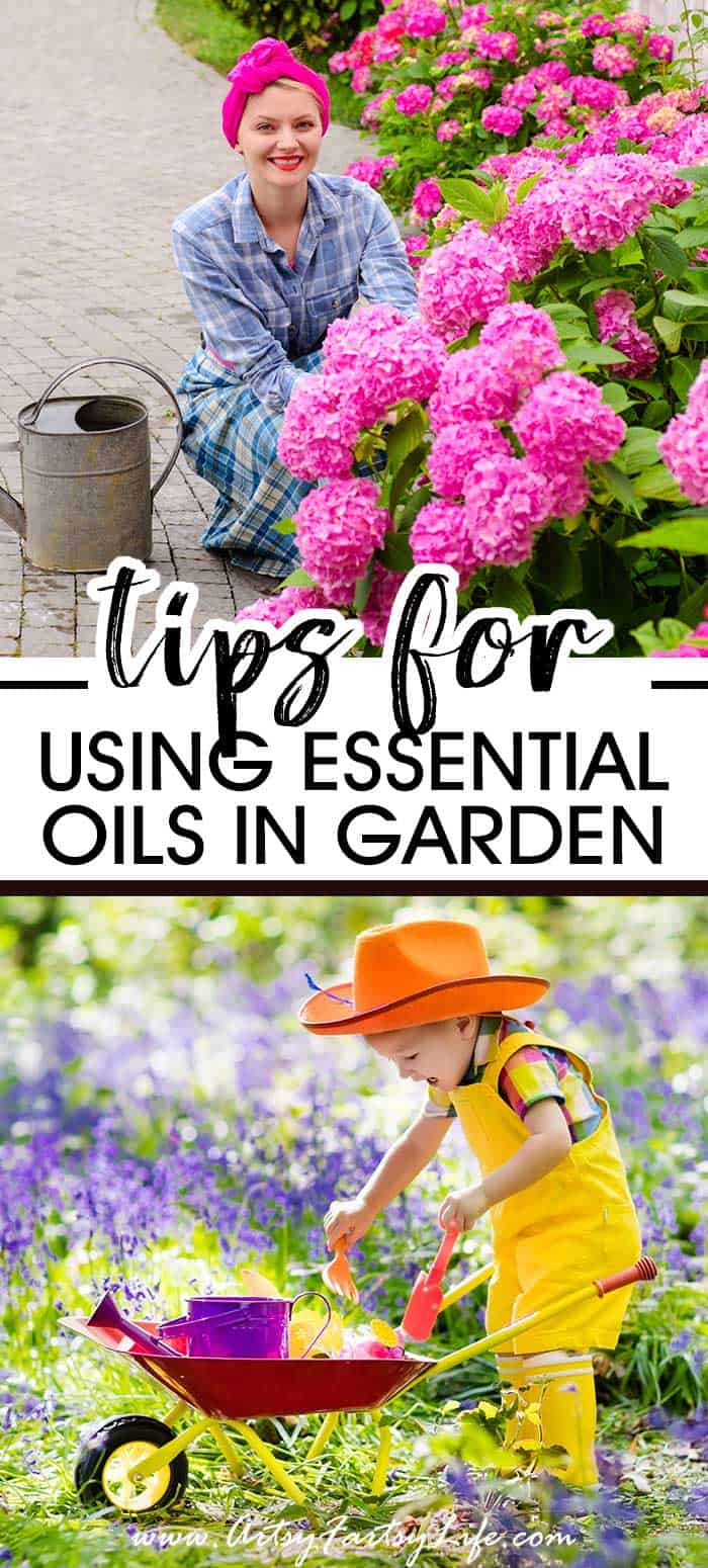 Tips and Ideas For Using Essential Oils In The Garden... There are so many ways to use essential oils in gardening. Recipes for tea, spray bottles and cotton balls. How to make your garden healthier by combatting pests, bugs, weeds and fungus the natural way. #gardening #essentialoils #naturalliving