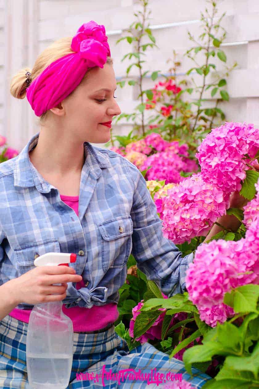 Essential Oils Spray Bottles... How To Use Essential oils in your garden. Spray bottles, recipes, cotton balls and more! #gardening #essentialoils #gardenpests