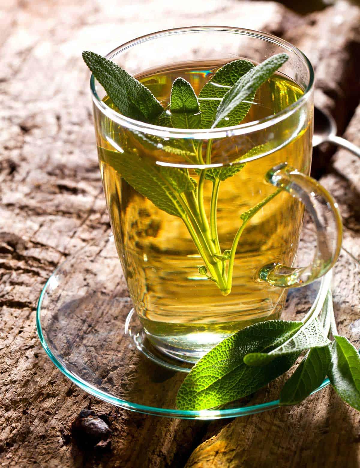 Sage Tea For Menopause