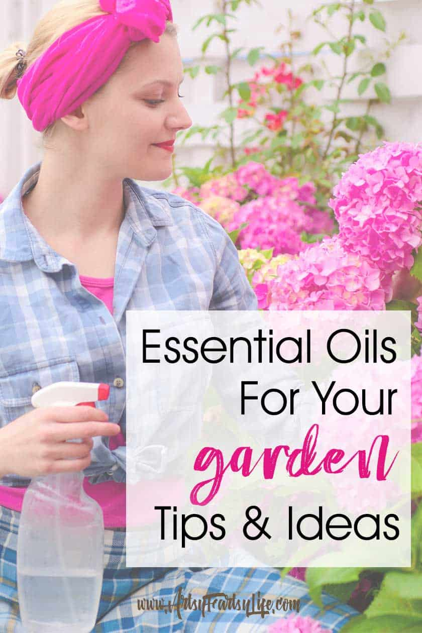 Essential Oils for Gardening... If you are looking for natural living ideas, choosing essential oils for your garden is a great idea! Tips and ideas for how to combat weeds, pests, fungus and bugs. Recipes for spray bottles, cotton balls and tea. #essentialoils #garden #spring