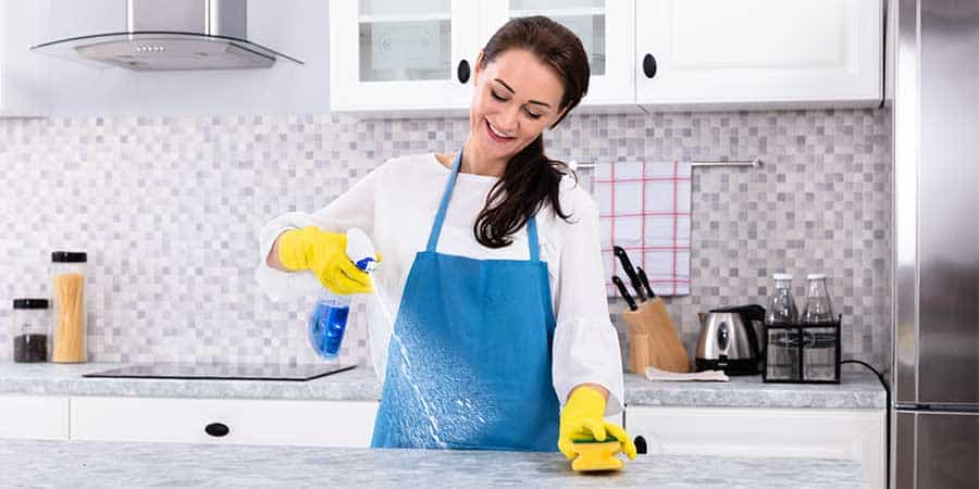 All purpose kitchen spray bottle recipe