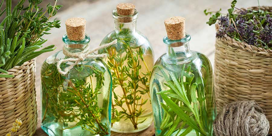 Fresh or Dried Herbs Insect Repellent
