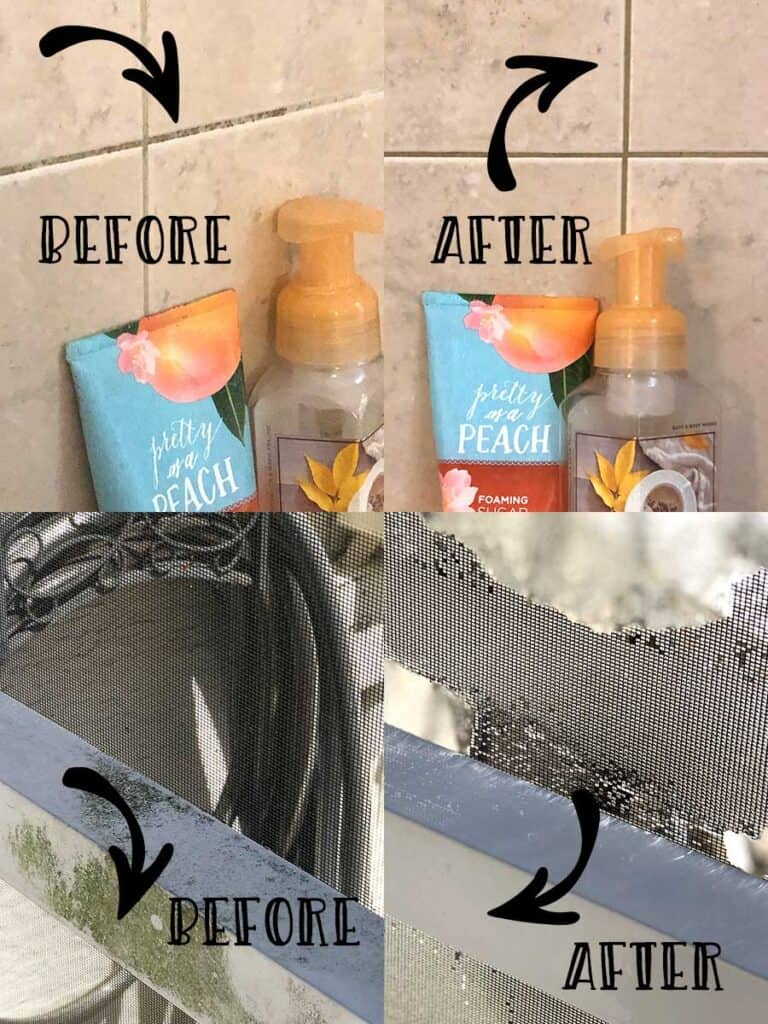 Before and after cleaning mold with essential oils