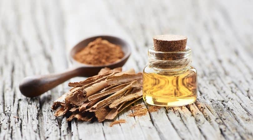 Cinnamon essential oils for mold