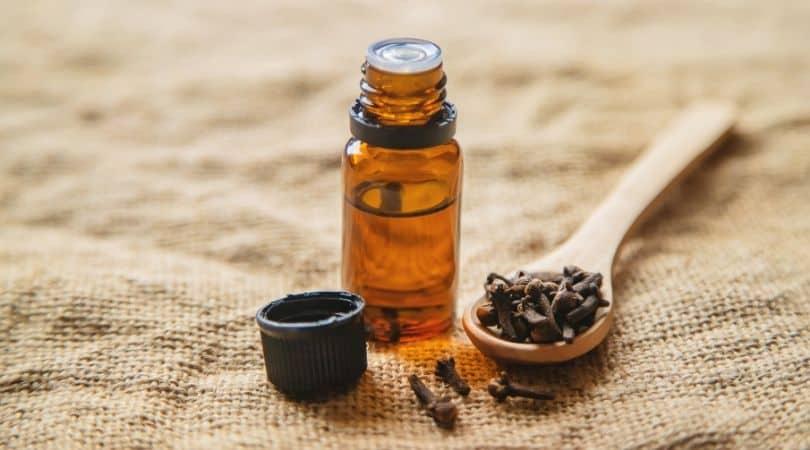 Clove essential oils for mold
