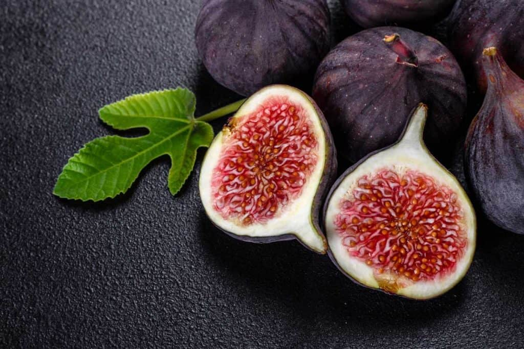 Fig Purple Colour